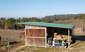 Projecte d'activitatd'una hípica,centre hípic o escola d'equitació