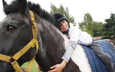 Projecte de Declaració d'Utilitat Pública o Interès Social d'una hípica,centre hípic o escola d'equitació