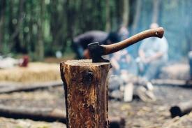 Ajuts treballs forestals